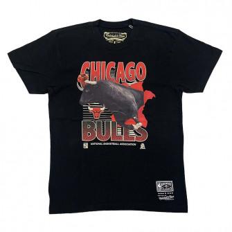 M&N NBA Chicago Bulls Scienic T-Shirt ''Black''